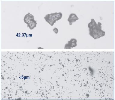 Figure 4. Nonmicronized and micronized purified flavonoid fractions. Nonmicronized purified flavonoid fraction (top) and MPFF (bottom). The micronization process increases the bioavailability of the flavonoids comprised in the MPFF composition.
