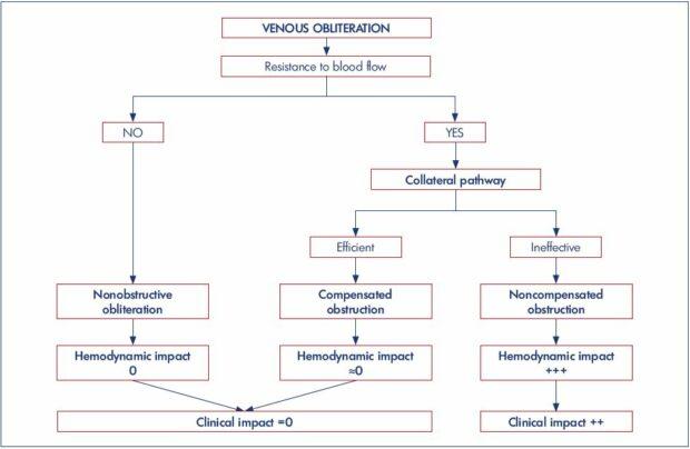 Pathophysiology of venous obstruction